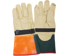 Inner and Outer Gloves
