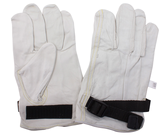 Inner and Outer Gloves                            - 0019-WR-9.5