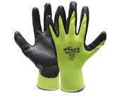 Hand Protection                                   - GLV77500-08