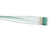 OM3 Pigtails                                      - PLC2M/900-MM3-6
