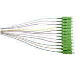 OS1 OS2 SM Pigtails                               - PSCA2M/900-SMC12